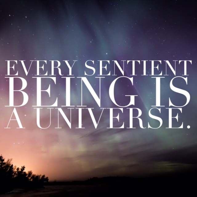 Every Sentiment Being is a universe